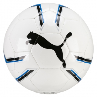 Puma Pro Training 2 MS Ball