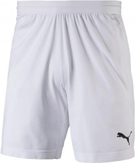 PUMA FINAL evoKNIT Shorts